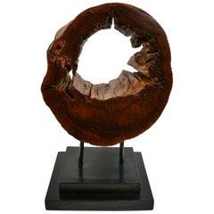 Tree Segment Wood Sculpture by Brunelli