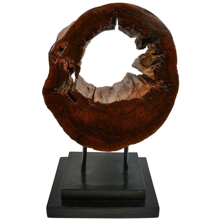 Tree Segment Wood Sculpture For Sale