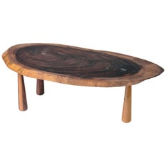 Tree Slice Coffee Table with Conical Legs