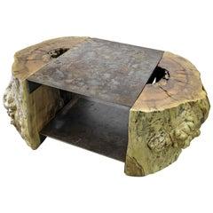 Tree Stump and Steel Coffee Table
