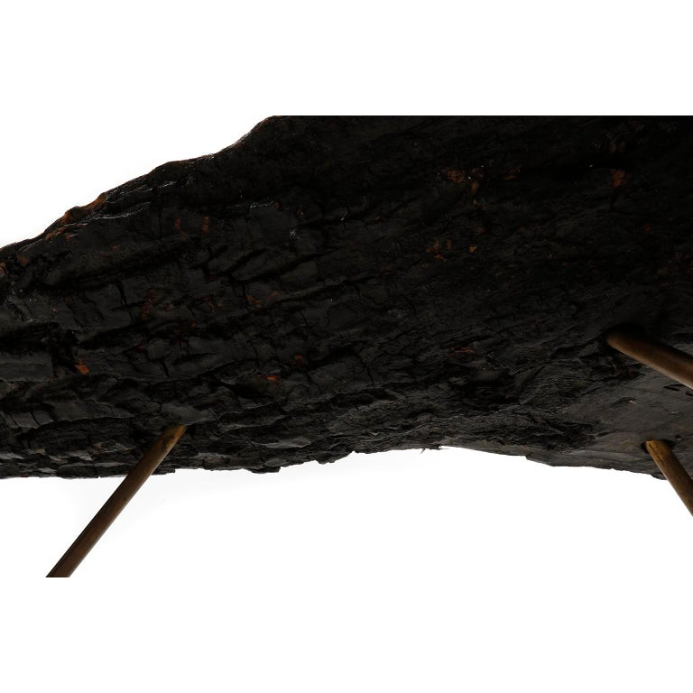 Tree Trunk Coffee Table, Carl Auböck, Walnut Patinated Brass, 1950s For Sale 1