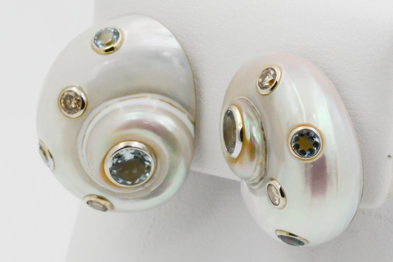 Trianon Umbonium 18 Karat White Gold and Aquamarine and Brown Diamond Earrings In New Condition For Sale In Dallas, TX