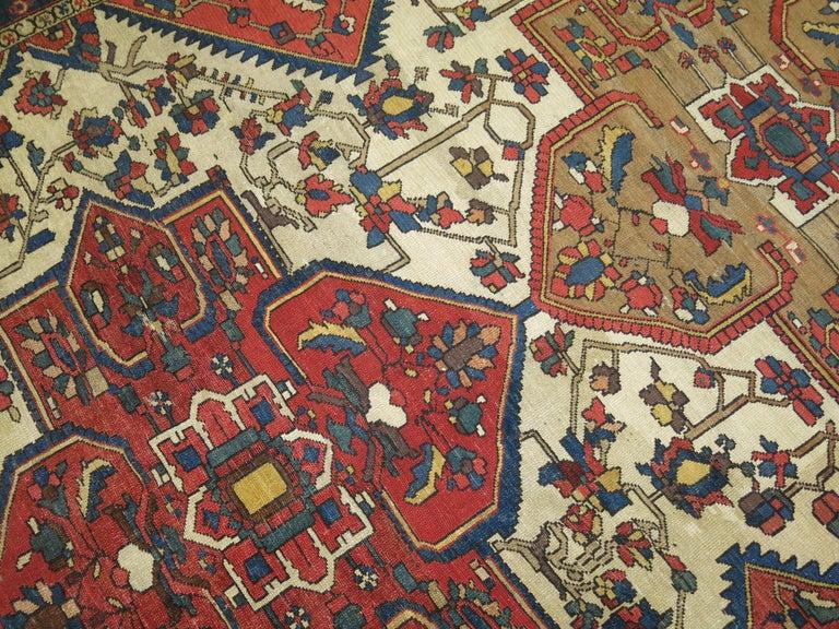 Tribal Antique Bakhtiari Rug For Sale 10