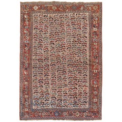 Tribal Chicken Motif Rustic Persian Afshar Accent Rug, Early 20th Century