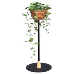 Trinum Medium Pedestal with Ceramic Planters, Contemporary Mexican Design