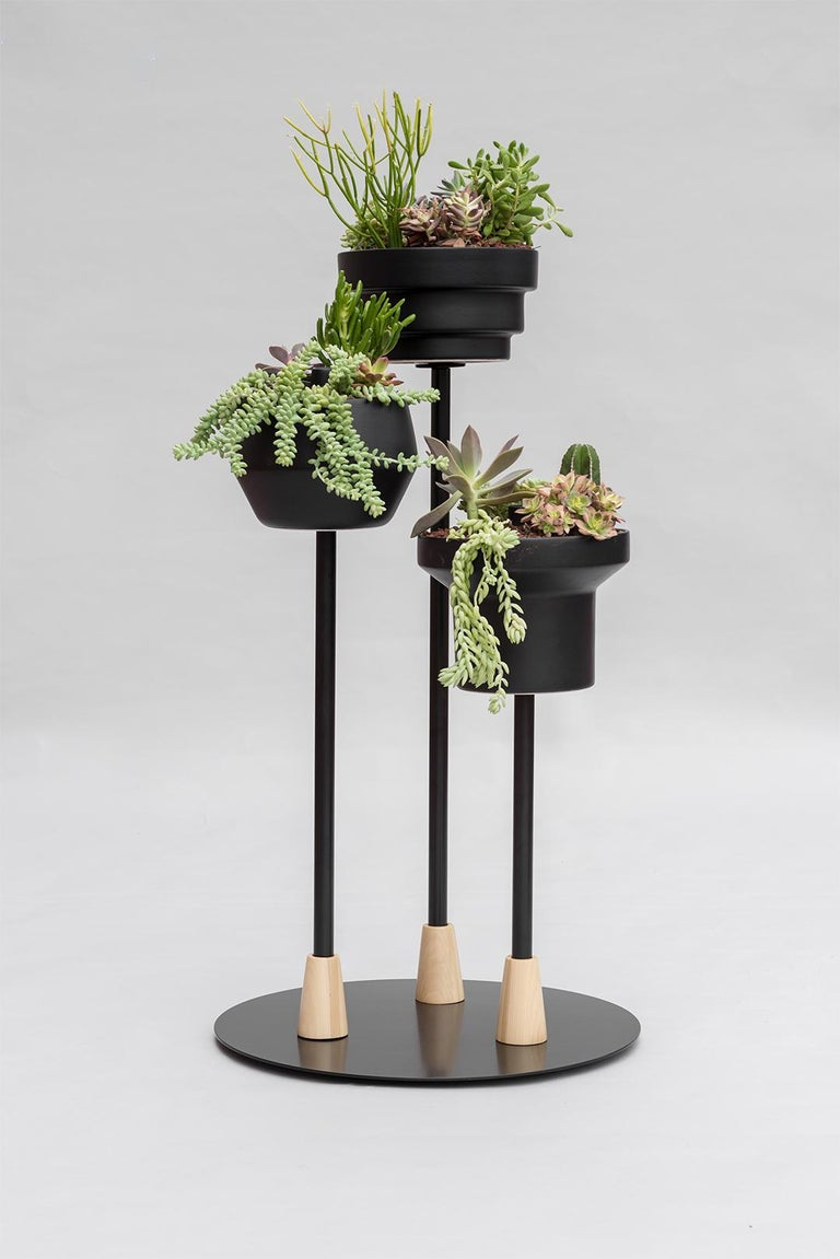 These 3 different planters come in 2 colors (black and terracotta) and can be used in 3 different ways: as a stand, on top of a counter or table, and suspended by a cotton chord. The use depends on how the user interacts with the space they will