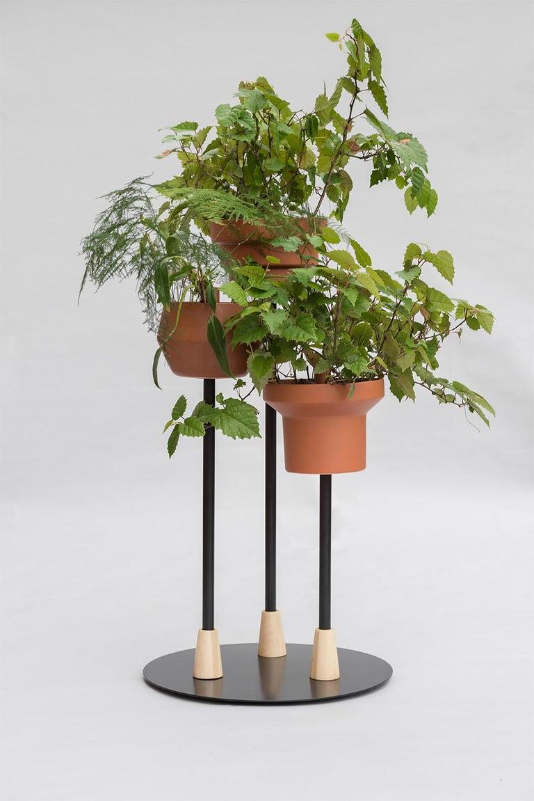 Powder-Coated Trinum Pedestal Multi Planter, Contemporary Mexican Design For Sale