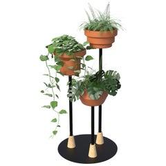 Trinum Pedestal Multi Planter, Contemporary Mexican Design
