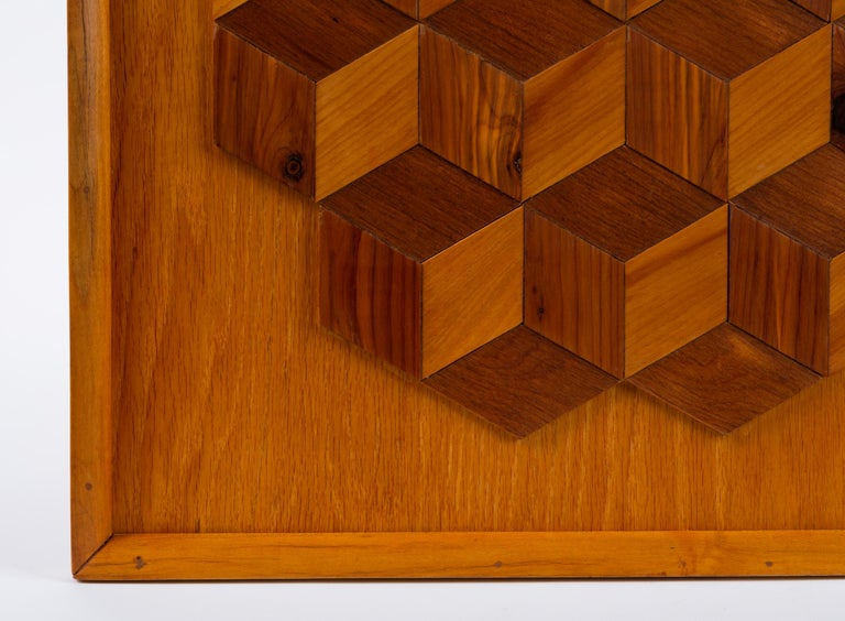 American Trompe L'Oeil Louis Cube Framed Marquetry Wall Art For Sale
