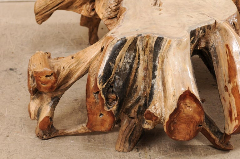 An Organically-Shaped Tropical Teak Stump & Root Hardwood Coffee Table For Sale 4