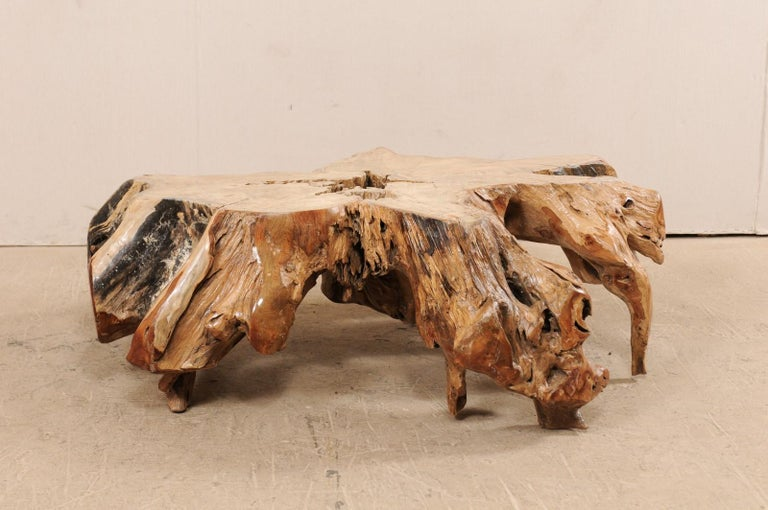 Rustic An Organically-Shaped Tropical Teak Stump & Root Hardwood Coffee Table For Sale
