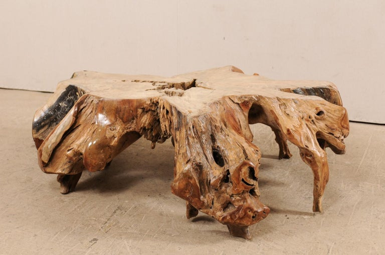 An Organically-Shaped Tropical Teak Stump & Root Hardwood Coffee Table In Good Condition For Sale In Atlanta, GA