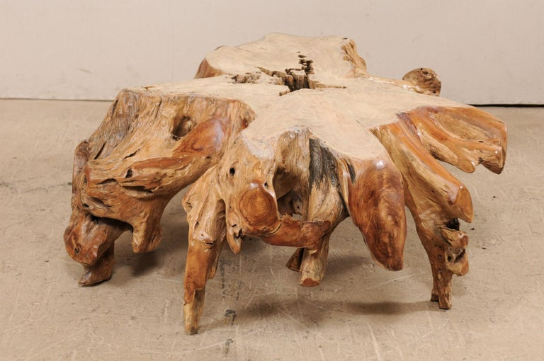 Contemporary An Organically-Shaped Tropical Teak Stump & Root Hardwood Coffee Table For Sale