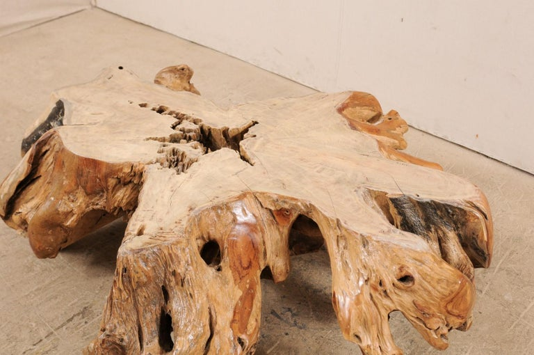 An Organically-Shaped Tropical Teak Stump & Root Hardwood Coffee Table For Sale 1