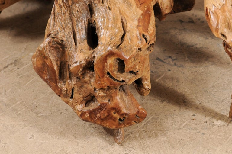An Organically-Shaped Tropical Teak Stump & Root Hardwood Coffee Table For Sale 2