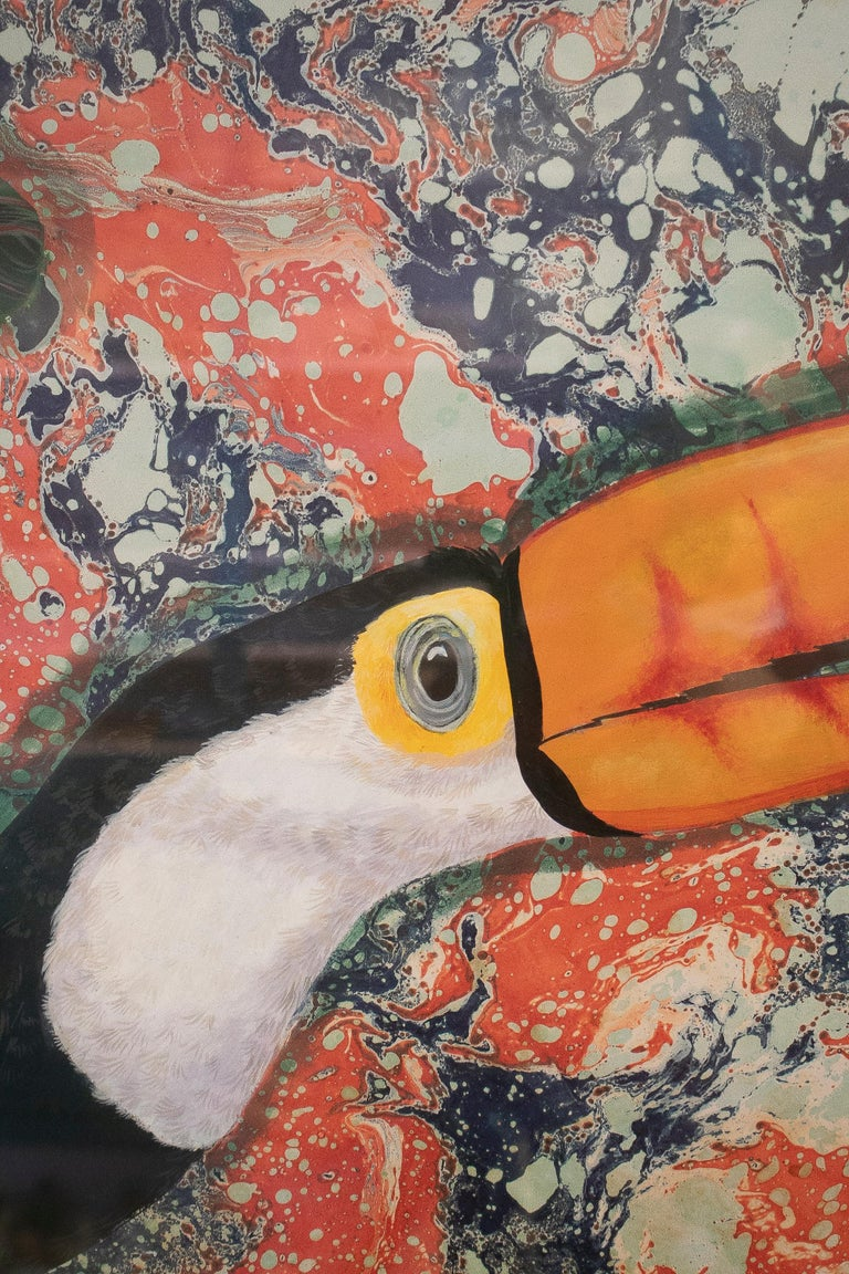 20th Century Tucan Painting by Joao de Haro For Sale