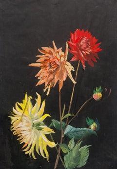 Tüema Pattie, Early Dahlias, Poster Colour
