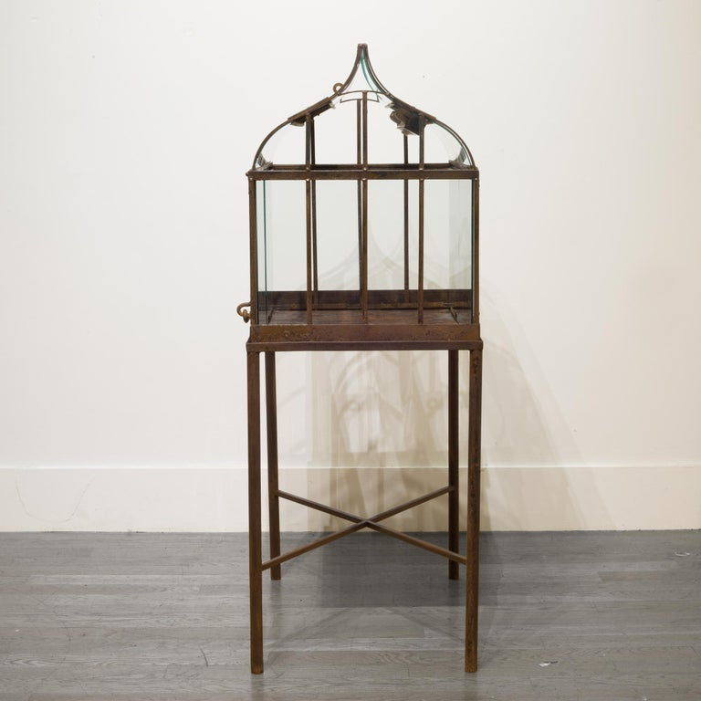Turn of the Century Antique Wrought Iron Wardian Case on Stand, circa 1900 In Good Condition For Sale In San Francisco, CA