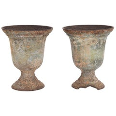 Turn of the Century French Cast Iron Planters, a Pair