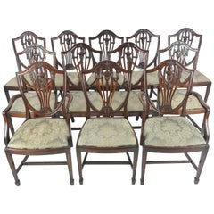 Twelve Dining Chairs, Antique Dining Chairs, Hepplewhite Chairs, Walnut, B1071