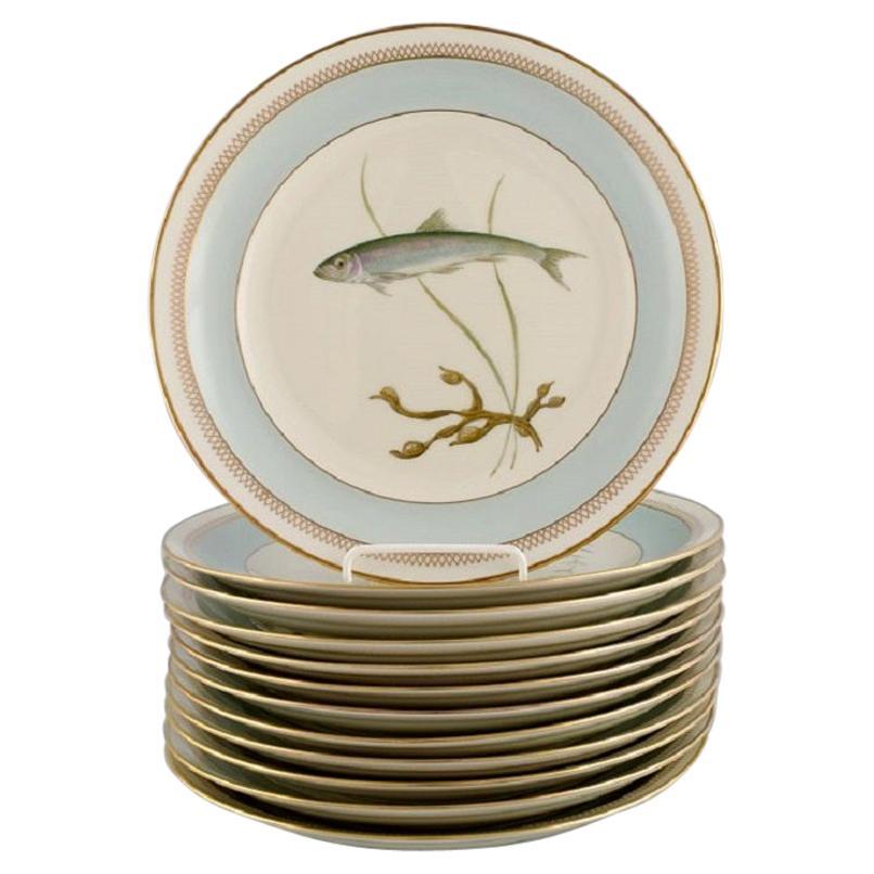 Twelve Royal Copenhagen Porcelain Dinner Plates with Hand-Painted Fish Motifs