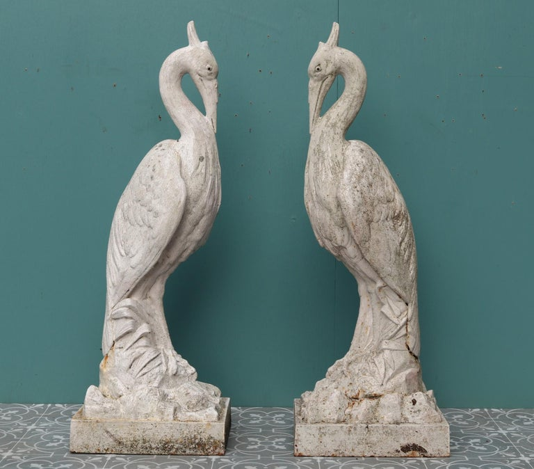 A pair of large antique cast iron heron figures standing on naturalistic bases.  Additional Dimensions  Base30 x 23 cm.