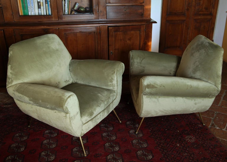 Two Armchairs Gigi Radice for Minotti Fully Restored High Pile Cotton Velvet 4