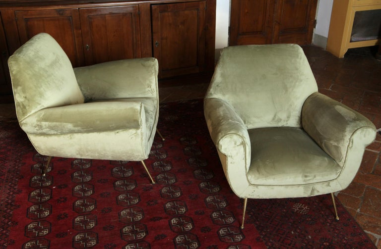 Two Armchairs Gigi Radice for Minotti Fully Restored High Pile Cotton Velvet 2