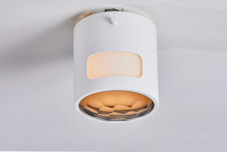 Mid-Century Modern Two Ceiling Lights For Sale