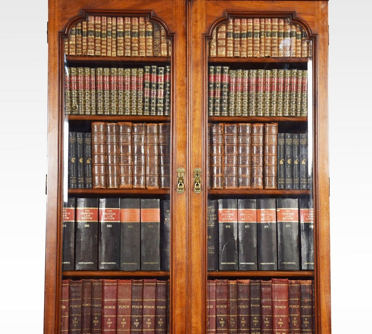 19th Century Two-Door Narrow Walnut Bookcase
