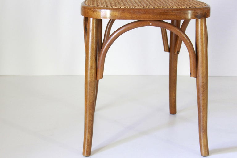 Two Early 20th Century Thonet Style curved Wood Chairs For Sale 5