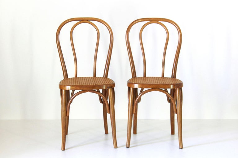 Two early 20th century Thonet style chairs with curved wood structure and wien cane seat. In very good conditions with only few signs of time.