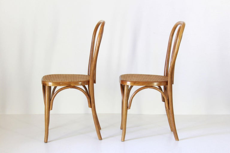 Rustic Two Early 20th Century Thonet Style curved Wood Chairs For Sale
