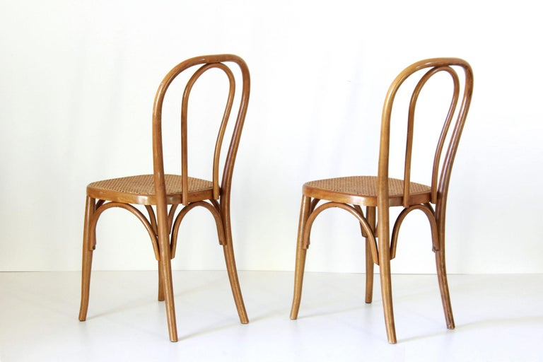 Austrian Two Early 20th Century Thonet Style curved Wood Chairs For Sale