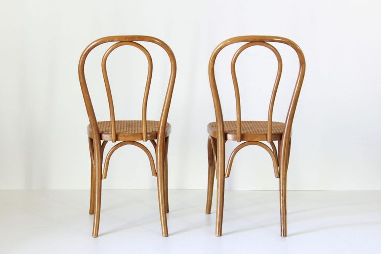 Two Early 20th Century Thonet Style curved Wood Chairs In Good Condition For Sale In Ceglie Messapica, IT