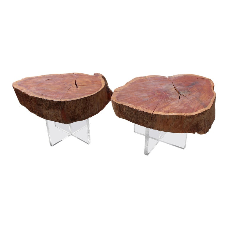 Two Eucalyptus Side Table For Sale