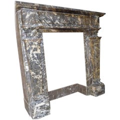 Antique Fireplace Grey Marble Gris des Andennes, 19th. Century
