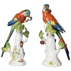 Two German Porcelain Parrots, Meissen, circa 1875