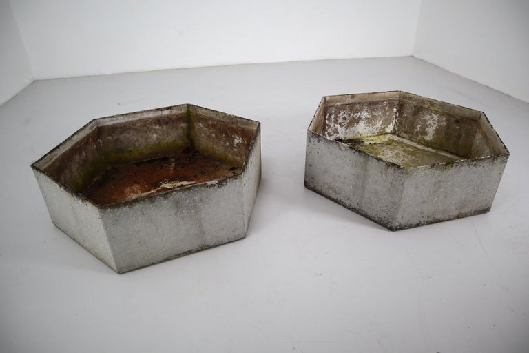 Two Large Hexagon Shaped Planters by Swiss Architect Willy Guhl In Good Condition For Sale In Almelo, NL