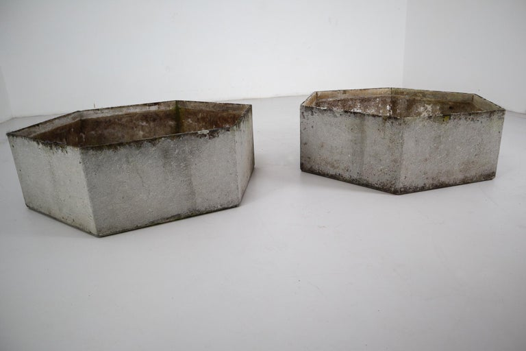 20th Century Two Large Hexagon Shaped Planters by Swiss Architect Willy Guhl For Sale
