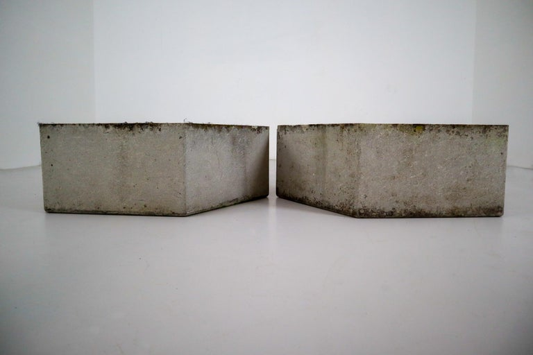 Concrete Two Large Hexagon Shaped Planters by Swiss Architect Willy Guhl For Sale