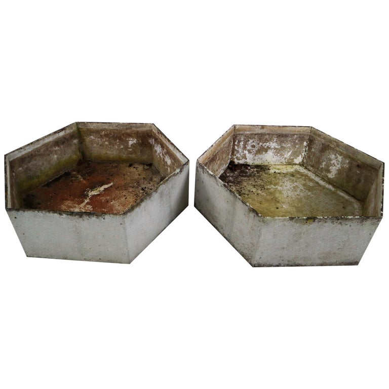 Two Large Hexagon Shaped Planters by Swiss Architect Willy Guhl For Sale