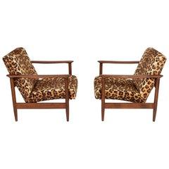 Two Leopard Velvet Armchairs, Hollywood Regency, Edmund Homa, 1960s, Poland