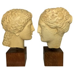 Two Life-Size Classicakl Plaster Heads