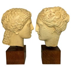 Two Life-Size Classical Plaster Heads