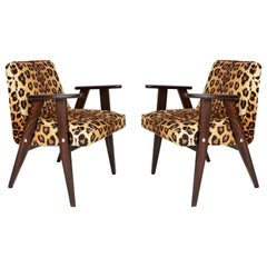 Two Midcentury 366 Armchairs in Leopard Print Velvet, Jozef Chierowski, 1960s