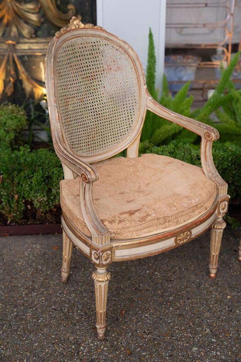 Beautifully shaped 19th century Venetian armchairs.