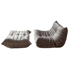 Two-Piece Togo Set by Michel Ducaroy, Ligne Roset. Elephant Grey Velvet