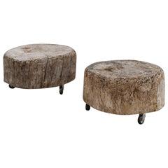 Two Treetrunk Elmwood Stump Tables on Wheels