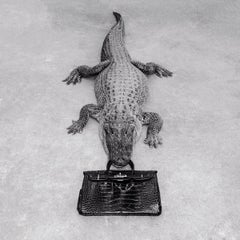 Gator Birkin Monochrome